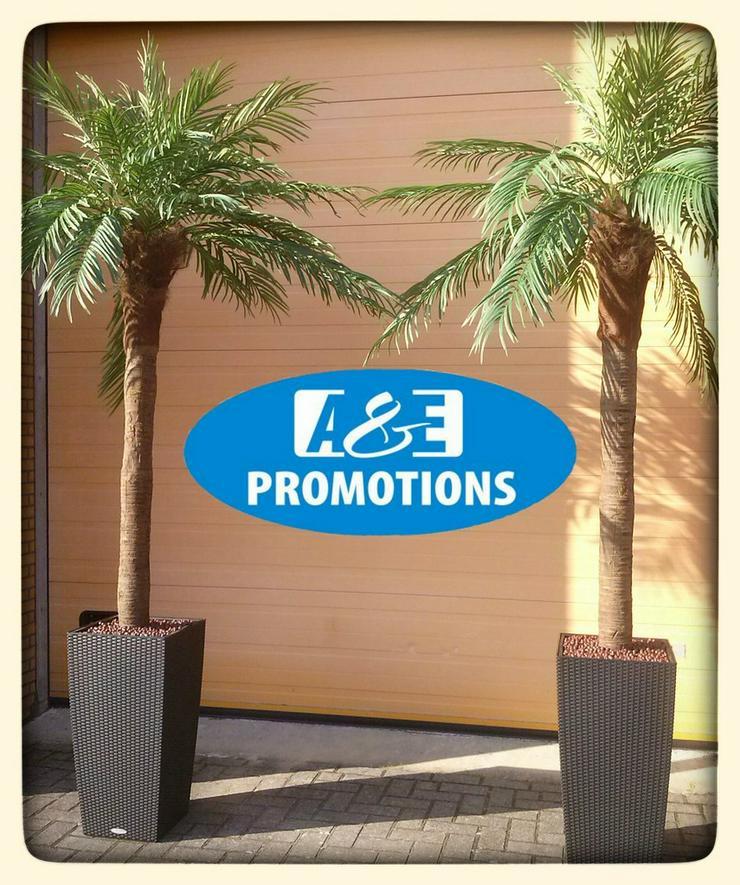 sehr schöne palmen mieten karibik props usw.