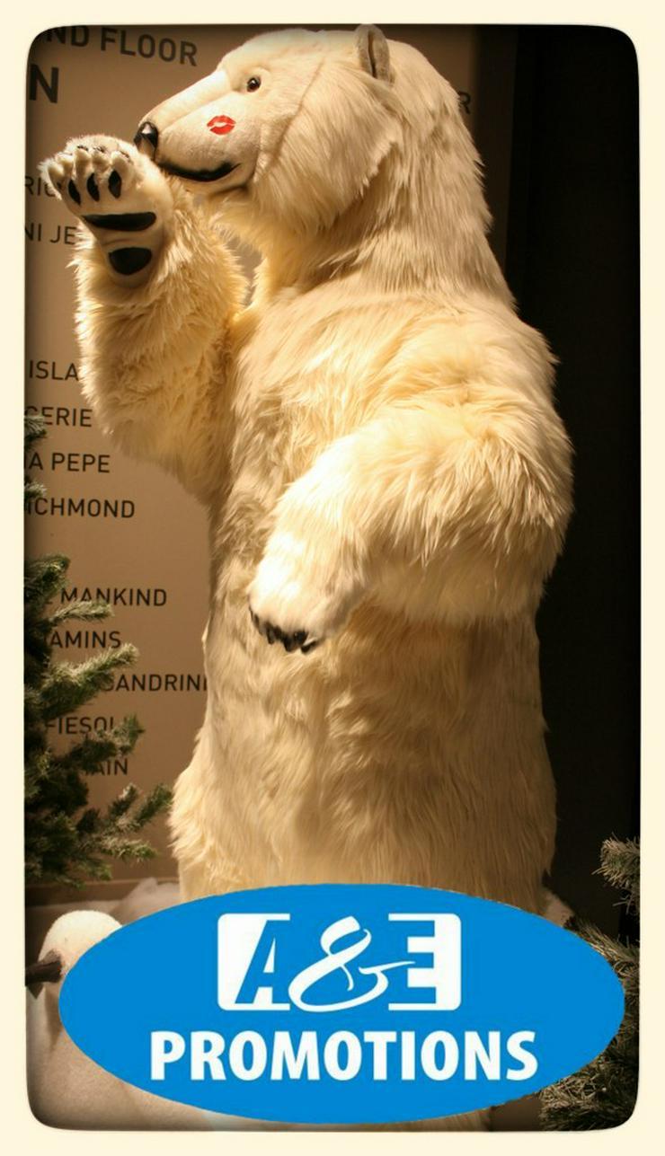Bild 4: nordpol requisiten verleih huskies schlitten