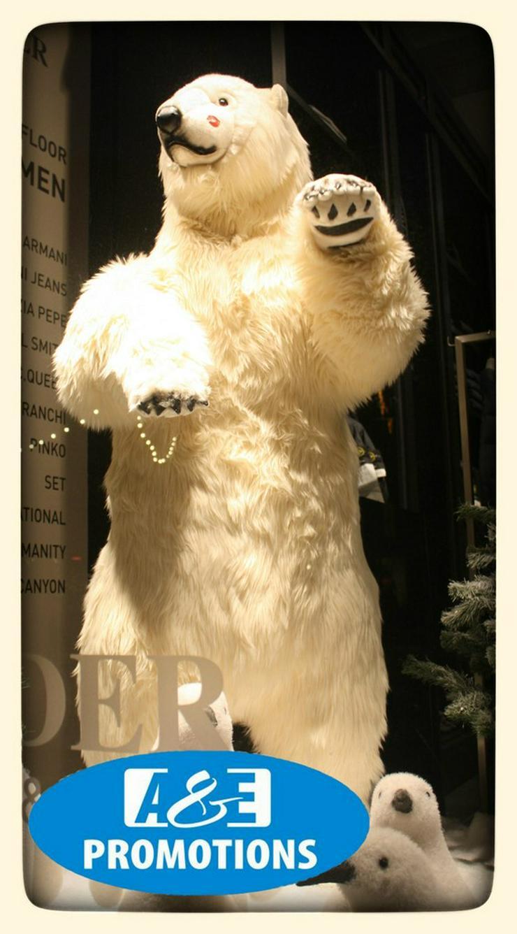 Bild 4: top weihnachts deko verleih lingen meppen