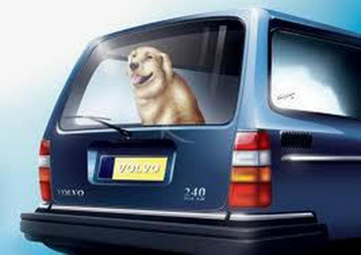 Original Ersatzteilebuch fur Volvo 240 und 260 - Weitere - Bild 1