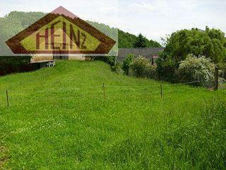 Bild 6: Großes Baugrundstück mit viel Nebengelass, als Reiterhof nutzbar