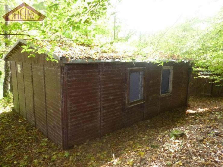 Bild 6: Stark sanierungsbedürftiges Gebäude mit viel Wald im Mühltal