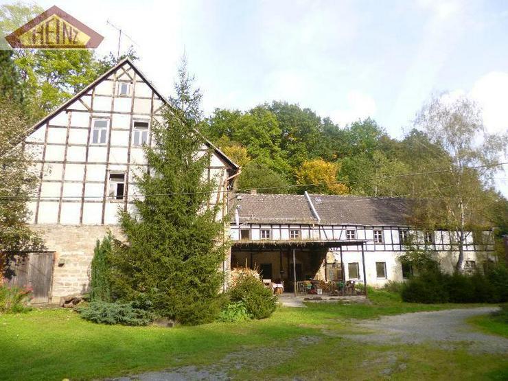 Bild 2: Stark sanierungsbedürftiges Gebäude mit viel Wald im Mühltal
