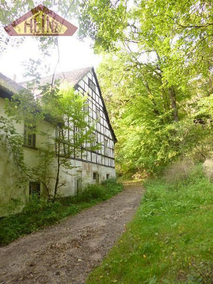 Bild 3: Stark sanierungsbedürftiges Gebäude mit viel Wald im Mühltal