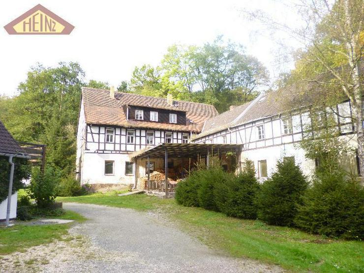 Stark sanierungsbedürftiges Gebäude mit viel Wald im Mühltal