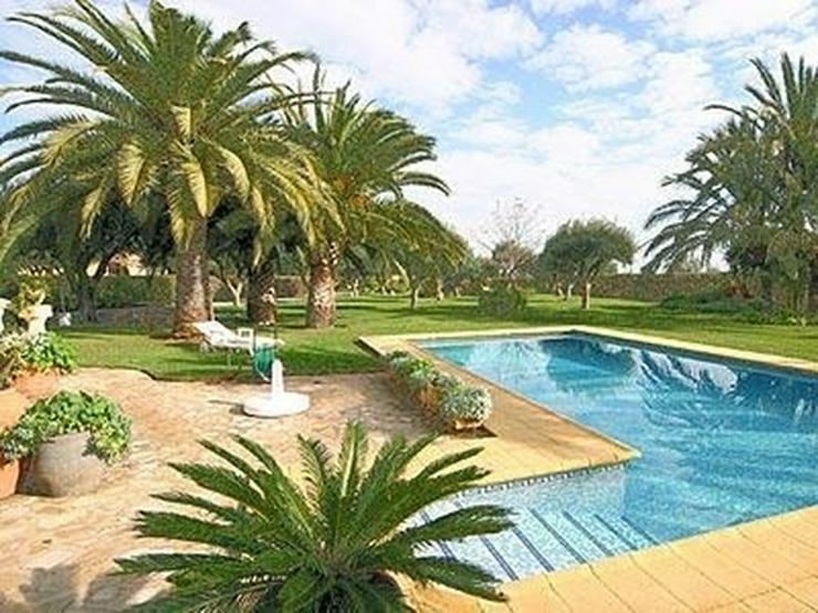 Bild 2: Traumhaftes Fincaanwesen mit Gästehaus u. parkähnlicher Gartenanlage nahe Denia