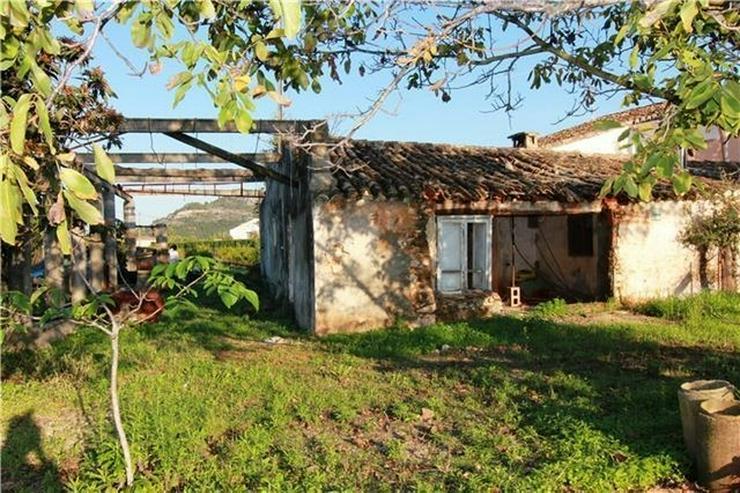 Renovierungsbedürftige Finca in den Orangenplantagen von Pedreguer - Haus kaufen - Bild 1