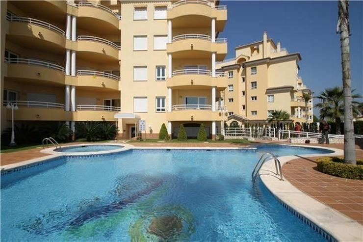 Sehr gepflegtes Apartment im Oliva Nova Golf mit Gemeinschaftspool, Parkplatz, nur 50 m vo... - Wohnung kaufen - Bild 1