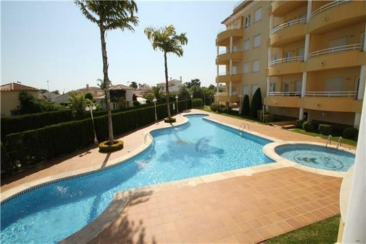 Bild 2: Sehr gepflegtes Apartment im Oliva Nova Golf mit Gemeinschaftspool, Parkplatz, nur 50 m vo...