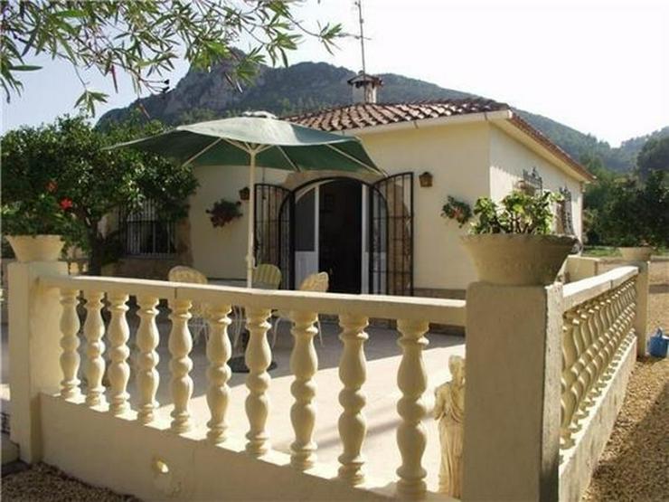 Gelegenheitsobjekt: Kleines Landhaus am Rande von Orba - Haus kaufen - Bild 5