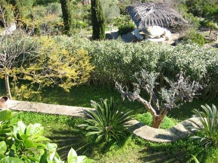 Bild 3: Reizvoll gelegenes Baugrundstück (Baulücke) am Monte Pego mit herrlicher, unverbaubarer ...
