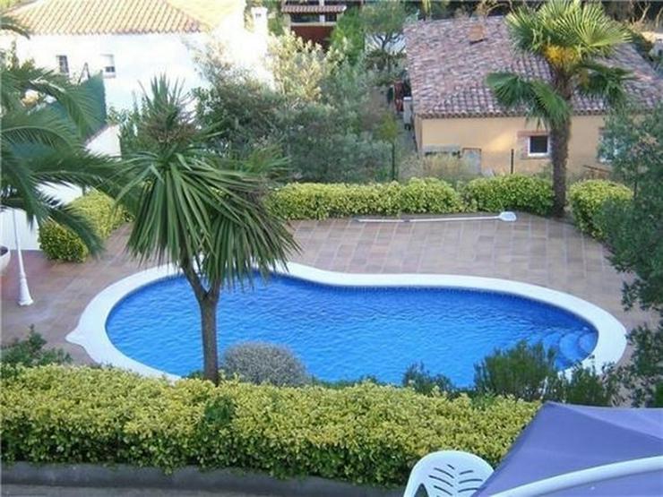 Bild 2: Schöne, privat gelegene Villa mit Pool und 4 -5 Schlafzimmern nahe Sant Feliu