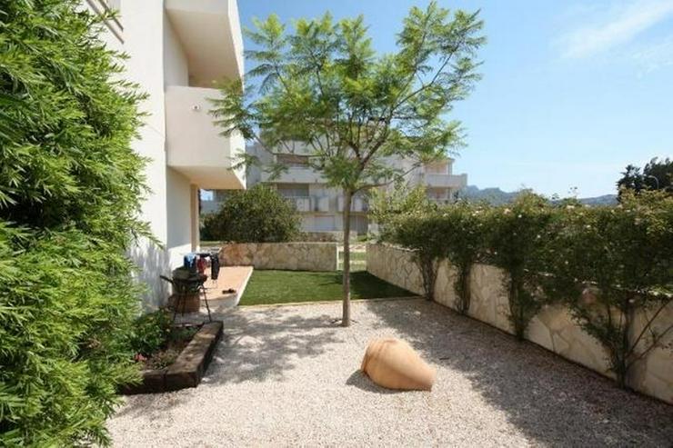 Bild 3: Meernahes, gepflegtes, 2 Schlafzimmer Apartment mit Gemeinschafts Pool in El Vergel