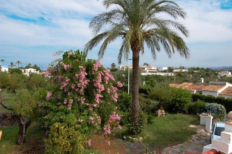 Bild 3: Villa in Javea.