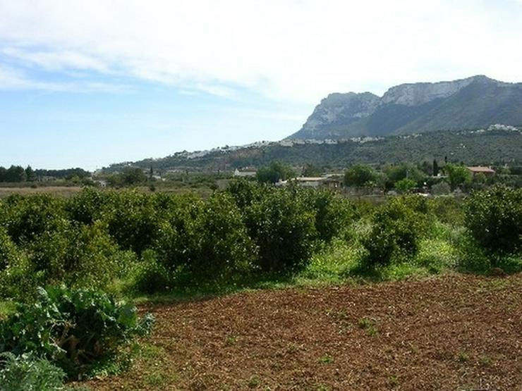 Bild 5: Grundstück in Denia