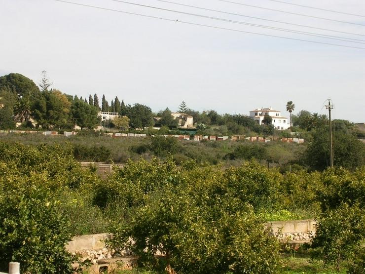 Bild 3: Grundstück in Denia