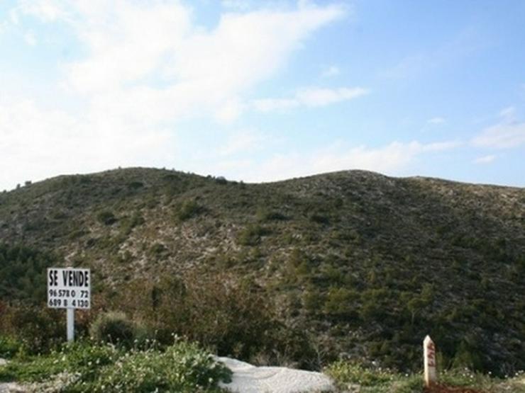 Bild 17: Grundstück in Pedreguer