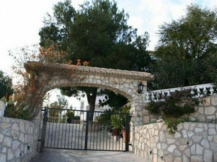 Bild 11: Grundstück in Pedreguer