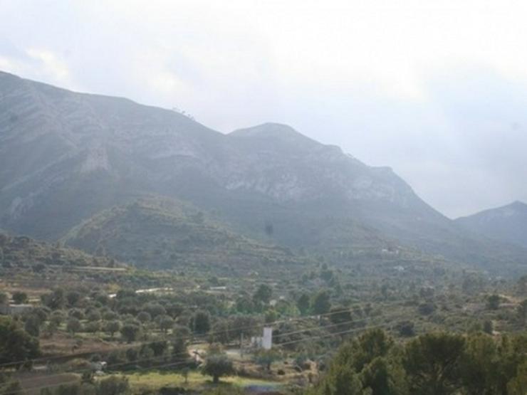 Bild 16: Grundstück in Pedreguer