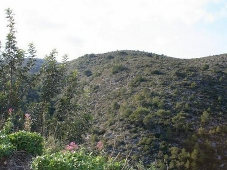 Bild 15: Grundstück in Pedreguer