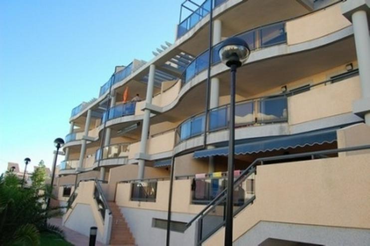 Appartement in Las Marinas - Wohnung kaufen - Bild 1