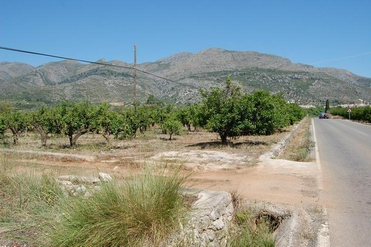 Bild 6: Grundstück in Orba