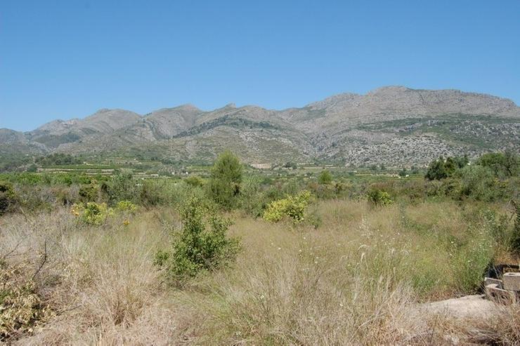 Bild 2: Grundstück in Orba