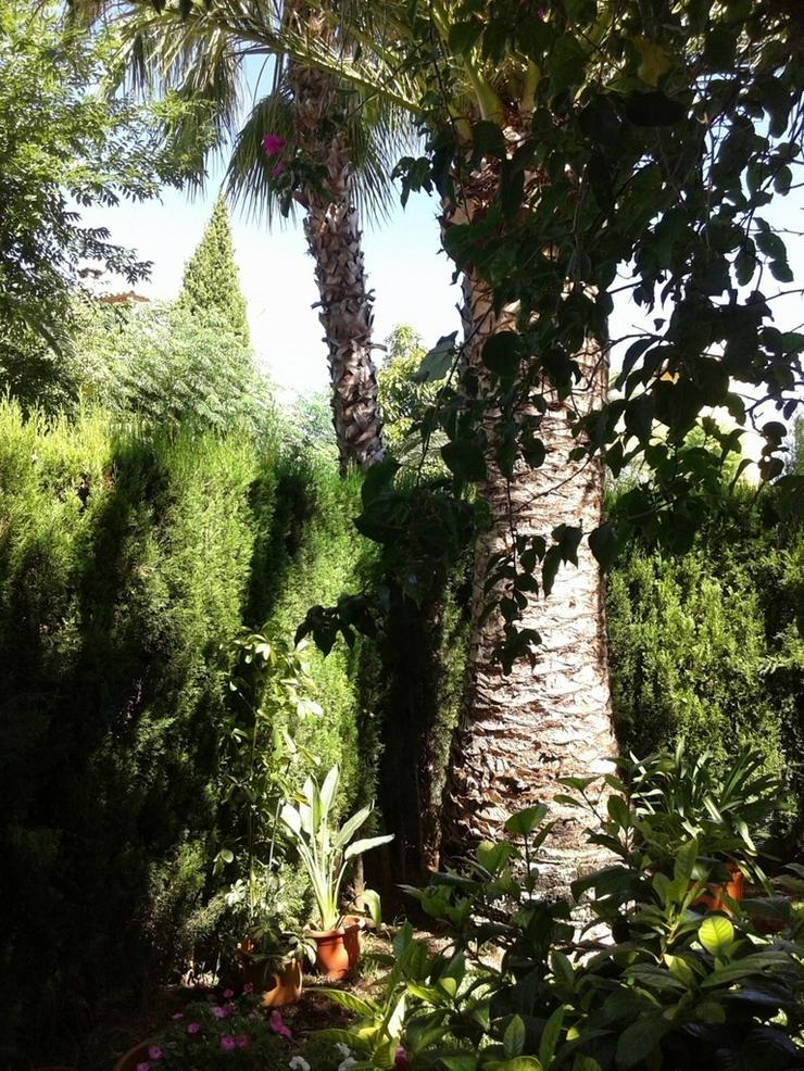 Bild 4: Haus in Denia.