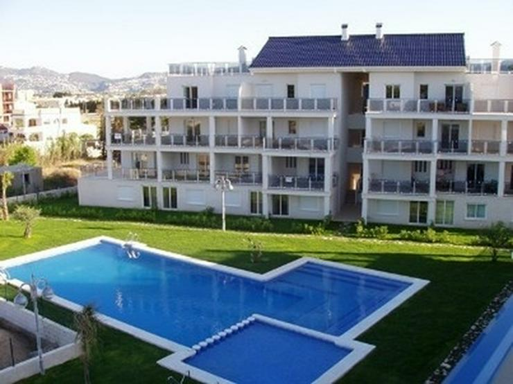 Appartement in Oliva Nova - Wohnung kaufen - Bild 1