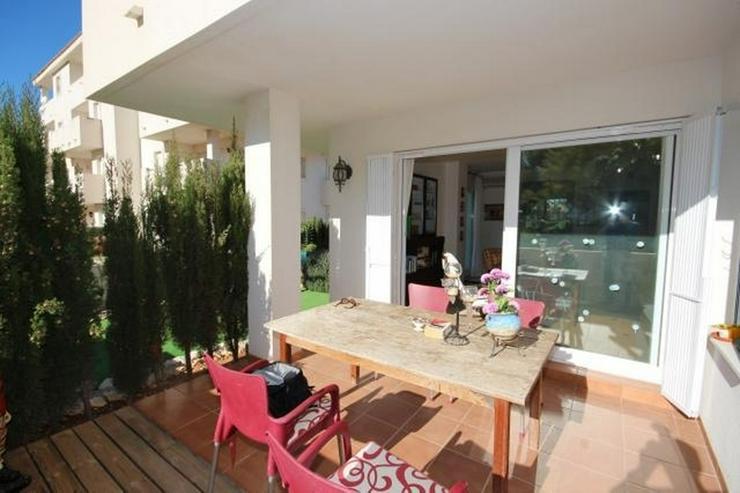 Bild 3: Ebenerdiges, gepflegtes 2 Schlafzimmer Apartment mit großzügiger Terrasse