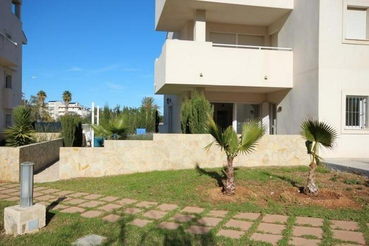 Bild 2: Ebenerdiges, gepflegtes 2 Schlafzimmer Apartment mit großzügiger Terrasse