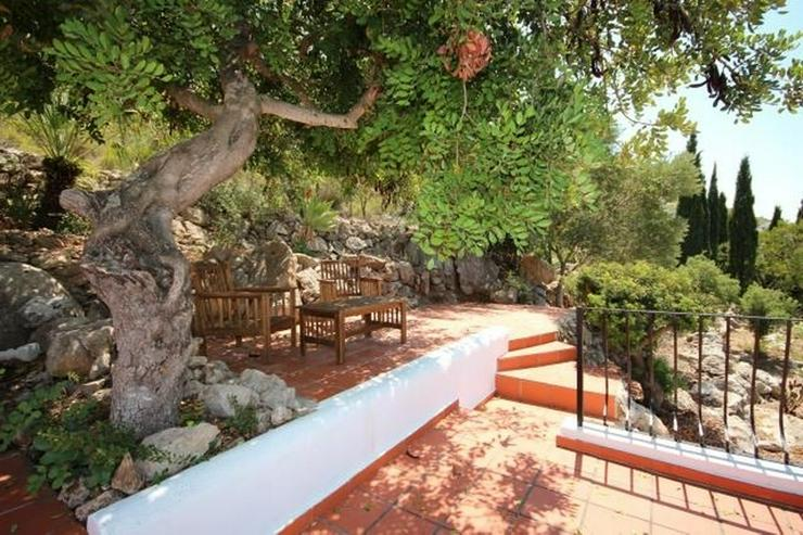 Bild 6: Spanischer Charme mit 5 SZ, separatem Gästebereich, Klima, Kamin, Pool und traumhaftem Me...
