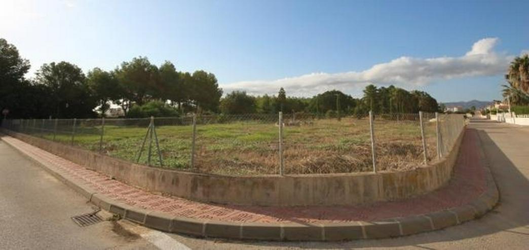 Flaches Land mit Geschäfts- und Hotel Verwendung von 1583m2 in Els Poblets. - Grundstück kaufen - Bild 1