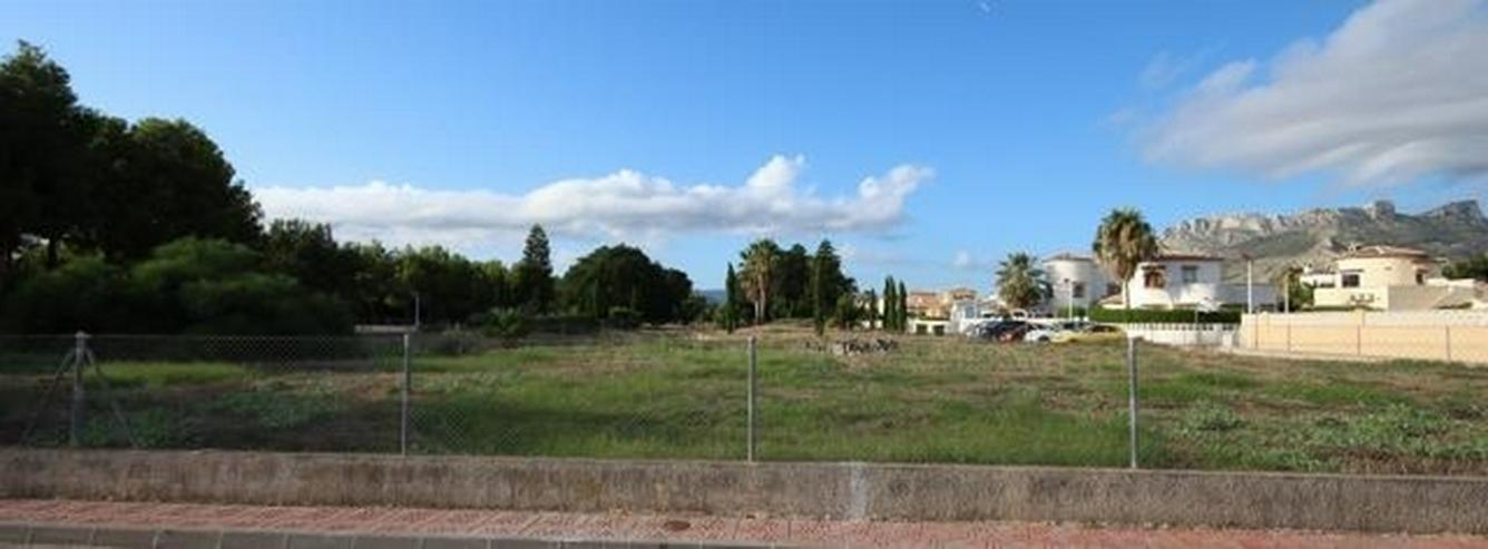 Bild 3: Flaches Land mit Geschäfts- und Hotel Verwendung von 1583m2 in Els Poblets.