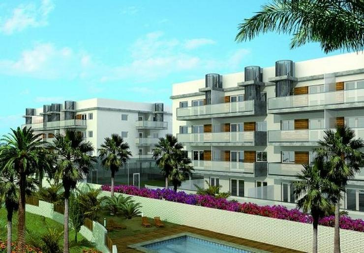 1,2 oder 3 Schlafzimmer Apartments in Oliva mit Gemeinschaftspool, 2 Badezimmer, Gartenanl... - Wohnung kaufen - Bild 1