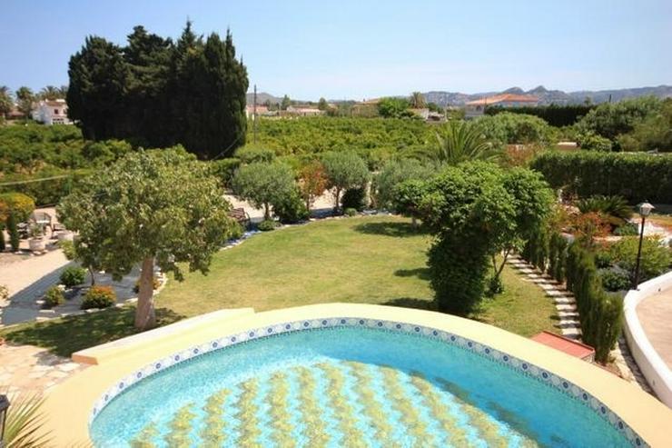 Bild 3: Villa mit 2 SZ und 3000 qm Grundstück mit 4-5 Campingstellplätze in Els Poblets