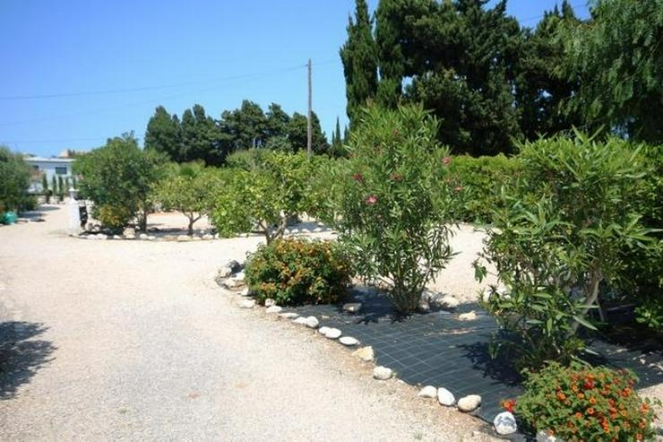 Bild 6: Villa mit 2 SZ und 3000 qm Grundstück mit 4-5 Campingstellplätze in Els Poblets