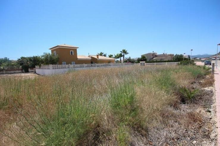 Bild 2: Schönes Baugrundstück für 1 - 2 Häuser, gegenüber einer Grünzone, Baulücke, ab 400 ...