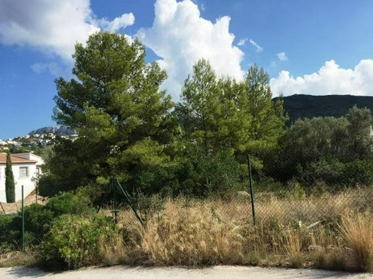 Bild 2: Sehr gut bebaubares flaches Grundstück mit Aussicht auf das Meer und die Berge am Monte P...