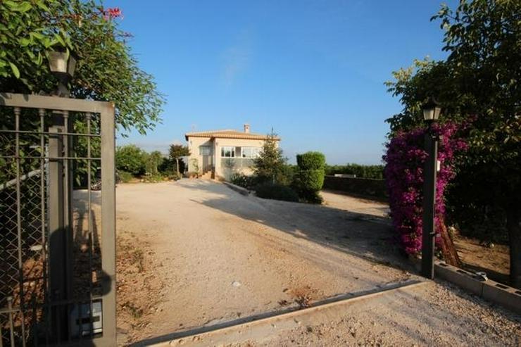Bild 4: Typisch, spanische Finca mit Orangenplantage, 3 Schlafzimmer, 2 Bäder, Keller, Brunnen, e...