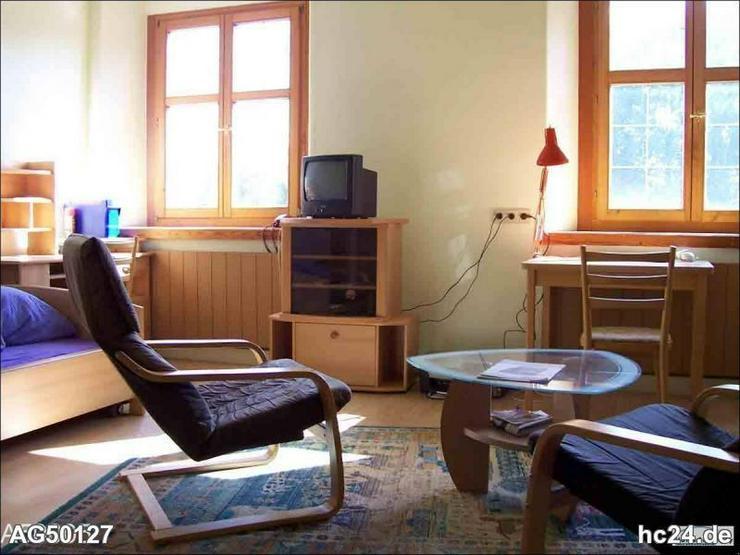 **** möbliertes Appartment in Erbach - Wohnen auf Zeit - Bild 1