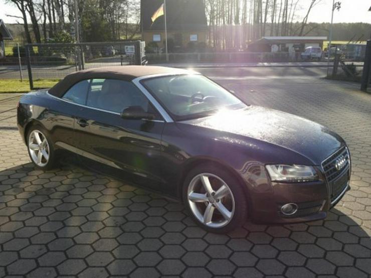 Bild 6: Audi A5 Cabriolet 2.7 TDI DPF Navi Akustikverdeck  Automatik
