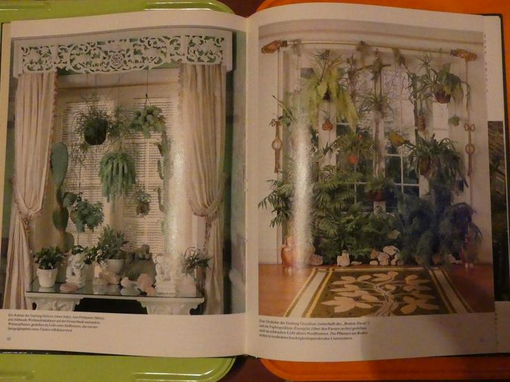 Bild 3: Pflanzen als Schmuck (auch zu verschicken)