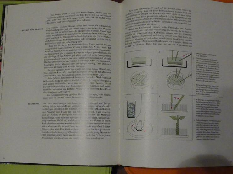 Bild 4: Pflanzen als Schmuck (auch zu verschicken)