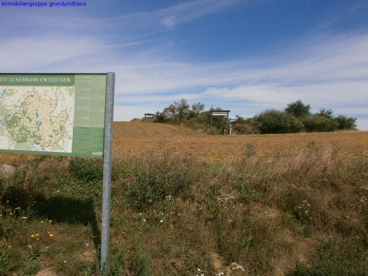 Bild 5: traumhaft gelegener Bauplatz mit Fernblick in Ruhiglage