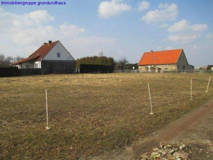 mit Vorbescheid: Bauplatz kurz vor Usedom, Kauf oder Erbbaurecht