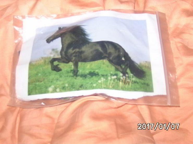 Pferde puzzel vollständig sehe foto