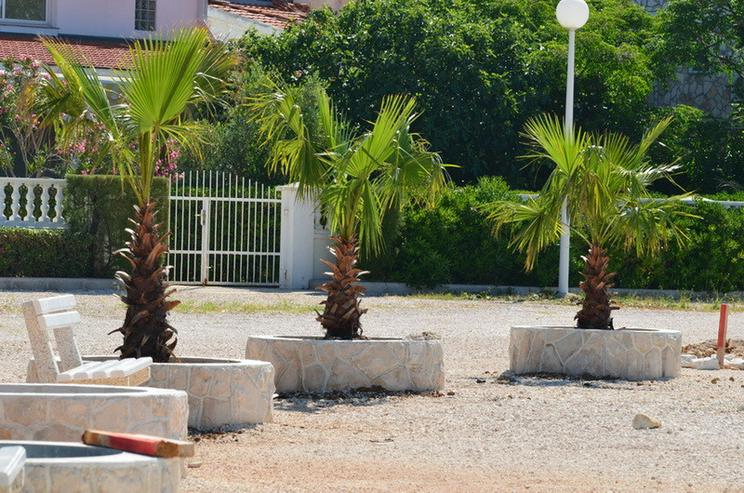 Bild 5: Urlaub  Kroatien Insel vir