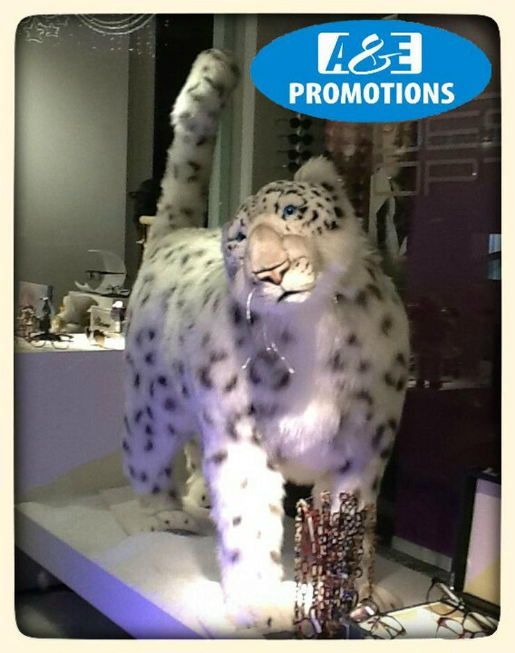 Bild 3: schneeleopard leihen mieten Schnee Requisiten