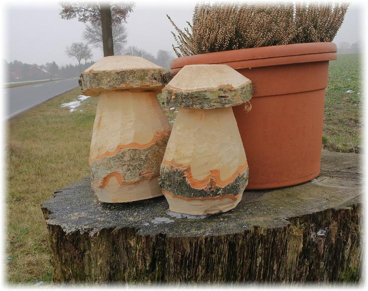Bild 2: Holzpilz.Pilze.Gartendeko.Holzdeko.